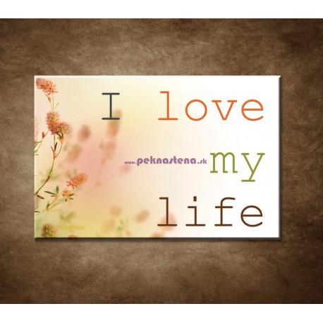 Obrazy na stenu - I love my life