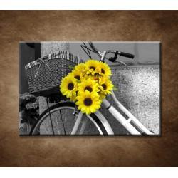 Obraz na stenu - Slnečnice na bicykli