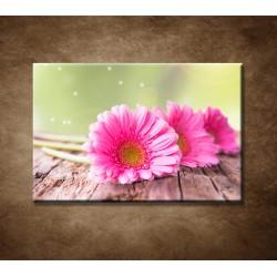Obraz - Tri ružové gerbery