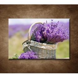Obrazy na stenu - Košík s levanduľou