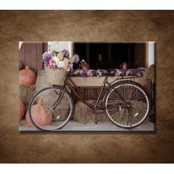 Obrazy na stenu - Bicykel a kvety