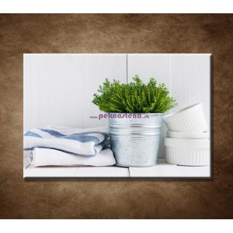 Obrazy na stenu - Bylinky