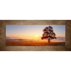 Obraz - Strom na lúke - panoráma