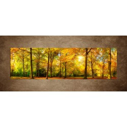 Obraz - Jesenný dub - panoráma