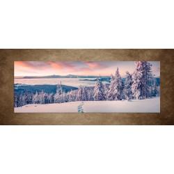Obrazy na stenu - Zima