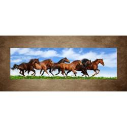 Obrazy na stenu - Bežiace kone