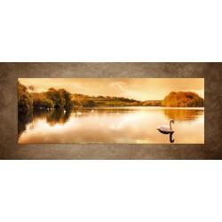 Obrazy na stenu - Labute pri západe slnka
