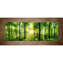 Obrazy na stenu - Listnaté stromy