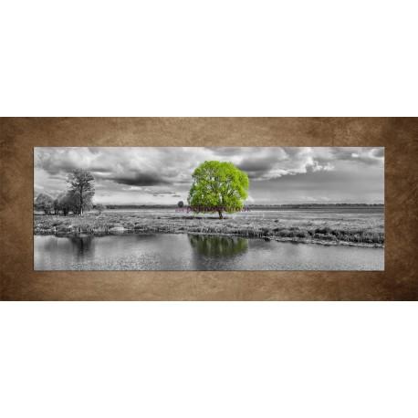 Obrazy na stenu - Zelený strom - panoráma
