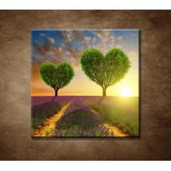 Obrazy na stenu - Stromy v tvare srdca