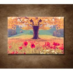 Obrazy na stenu - Jesenný strom