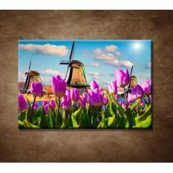 Obrazy na stenu - Veterné mlyny