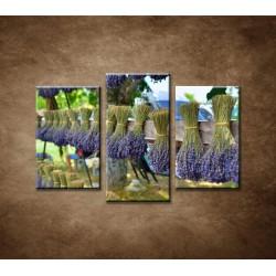 Obrazy na stenu - Sušená levanduľa - 3-dielny 75x50cm