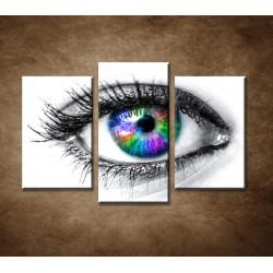 Obrazy na stenu - Farebné oko - 3dielny 75x50cm
