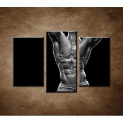 Obrazy na stenu - Kulturista - 3dielny 75x50cm