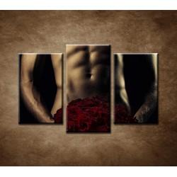 Obrazy na stenu - Sexi muž s ružami - 3dielny 75x50cm