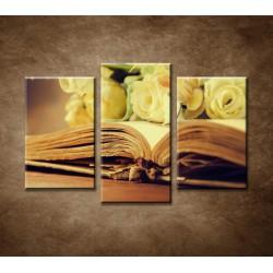 Obrazy na stenu - Stará kniha a ruže - 3-dielny 75x50cm