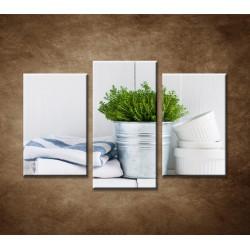 Obrazy na stenu - Bylinky - 3dielny 75x50cm