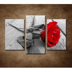 Obrazy na stenu - Červená ruža - 3dielny 90x60cm