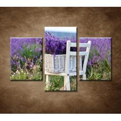 Obrazy na stenu - Levanduľa na stoličke - 3dielny 90x60cm