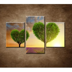 Obrazy na stenu - Stromy v tvare srdca - 3dielny 90x60cm