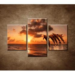 Obrazy na stenu - Delfíny - 3dielny 90x60cm