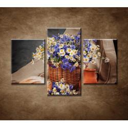 Obrazy na stenu - Poľné kvety - 3dielny 90x60cm