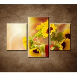 Obrazy na stenu - Krásne slnečnice - 3dielny 90x60cm