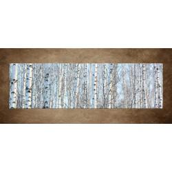 Obraz - Brezový les - panoráma