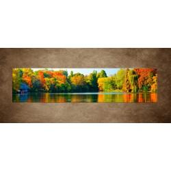 Obrazy na stenu - Farebný les