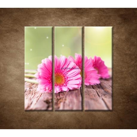 Obrazy na stenu - Tri ružové gerbery - 3dielny 90x90cm