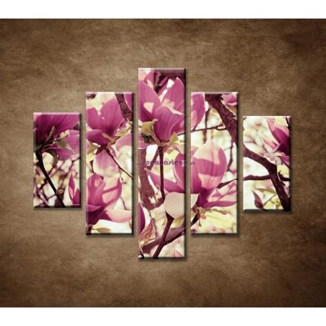 Obrazy na stenu - Kvety magnólie  - 5dielny 100x80cm