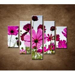 Obrazy na stenu - Lúčne kvety - 5dielny 100x80cm