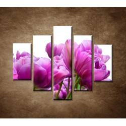 Obrazy na stenu - Tulipánové zátišie - 5dielny 100x80cm