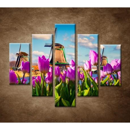 Obrazy na stenu - Veterné mlyny - 5dielny 100x80cm