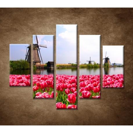 Obrazy na stenu - Veterné mlyny s tulipánmi - 5dielny 100x80cm