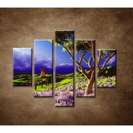 Obrazy na stenu - Levanduľové pole pred búrkou - 5dielny 100x80cm