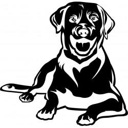 Nálepka na auto - Labrador - výška 10cm