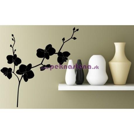 Nálepka na stenu - Orchidea