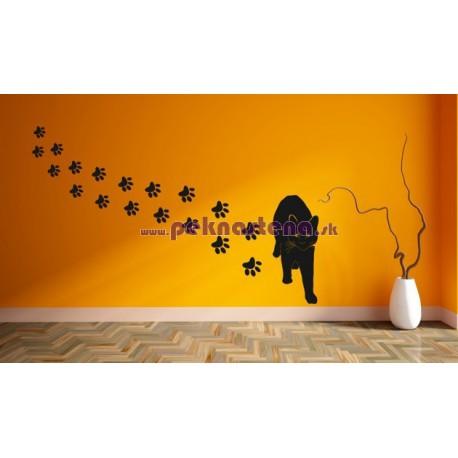 Nálepka na stenu - Mačka so stopami