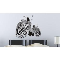Zebra s mláďatkom