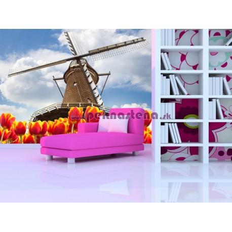 Fototapety - Mlyn s tulipánmi