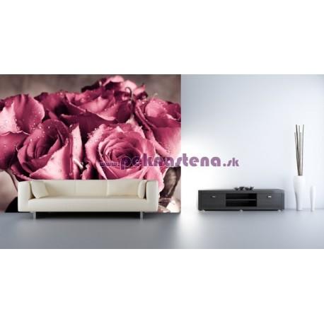 Fototapety - Kytica ruží