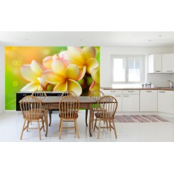 Fototapeta - Žltá orchidea