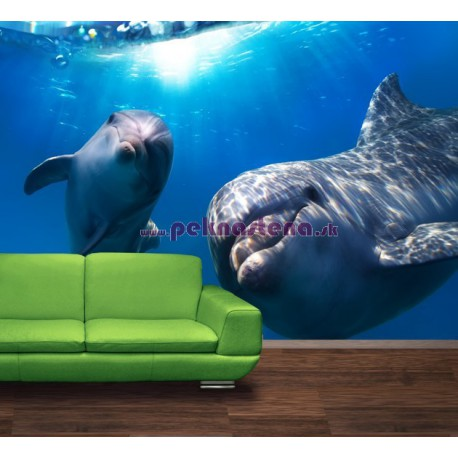 Fototapety - Delfíni pod vodou