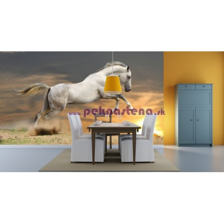 Fototapeta - Kôň pri západe slnka