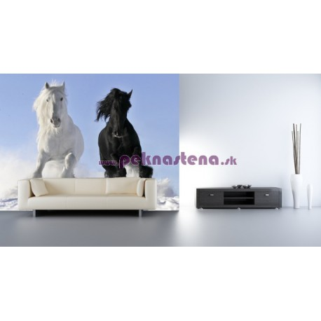 Fototapeta - Párik koní