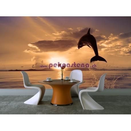 Fototapeta - Skákajúci delfín