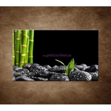 Obraz na stenu - Čierne kamene a bambus