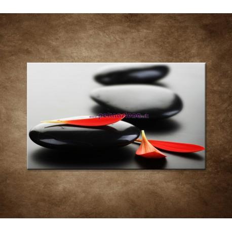 Obraz na stenu - Čierny kameň s červeným lupeňom